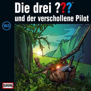 die drei fragezeichen und der verschollene pilot
